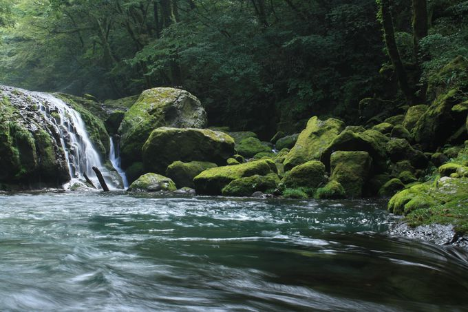 神秘的な癒しの空間、菊池渓谷