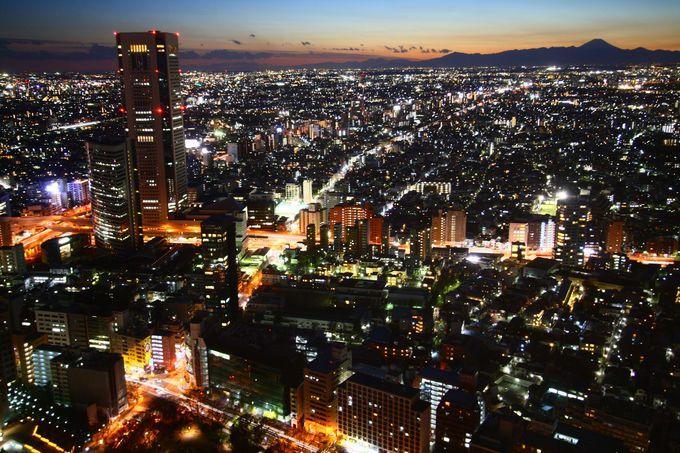 202mの高台からは富士山が見えることも