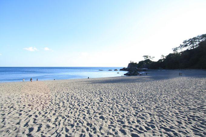 桂浜で太平洋を望む