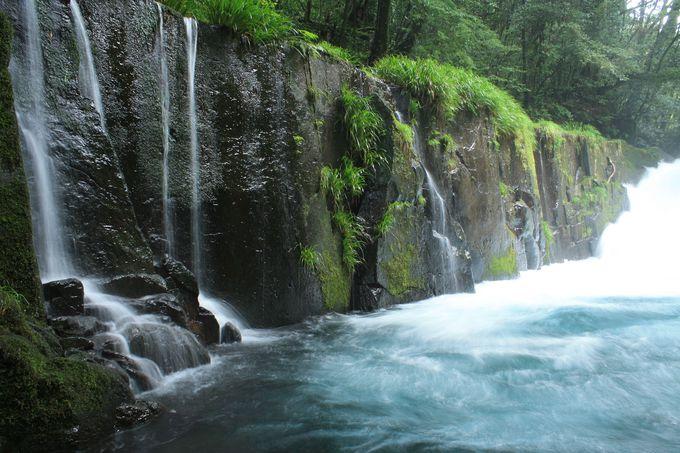 名水の滝は水の流れも美しい