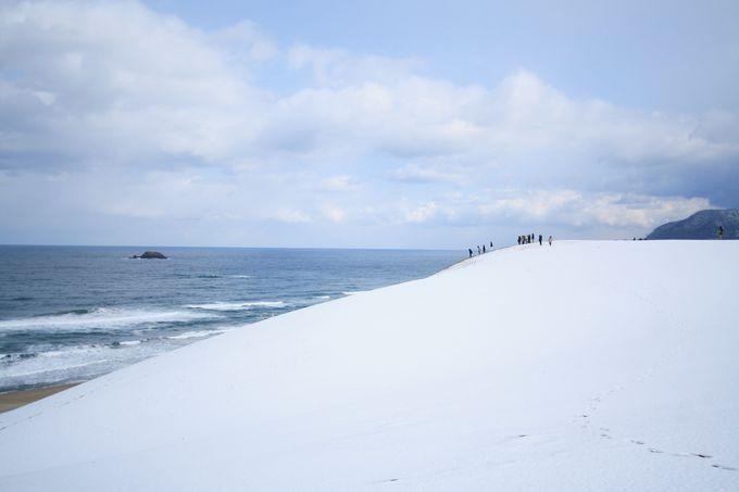 海と雪の砂丘が並んでいる珍しい景色も