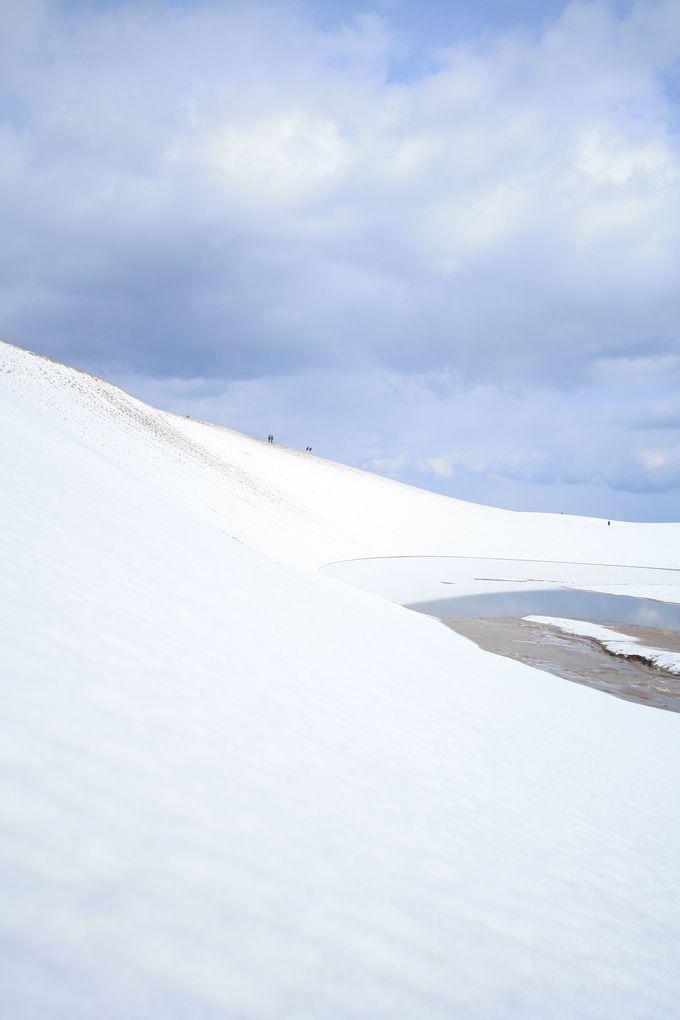 雪が積もれば一面真っ白の絶景に!
