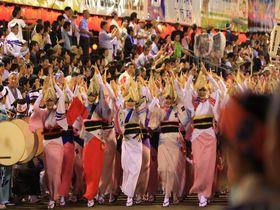 お盆はみんなで阿呆になろう!阿波おどりは徳島が誇る伝統の祭り