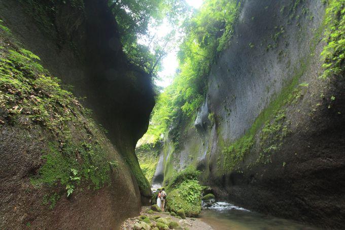 由布川渓谷では緑豊かな渓谷美を