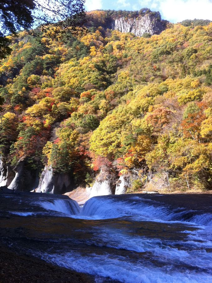 国内でも希少な見下ろす滝「吹割の滝」は群馬の名紅葉スポット
