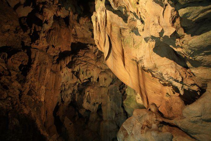 「龍河洞」「伊尾木洞」ではドキドキ必至の探検気分を