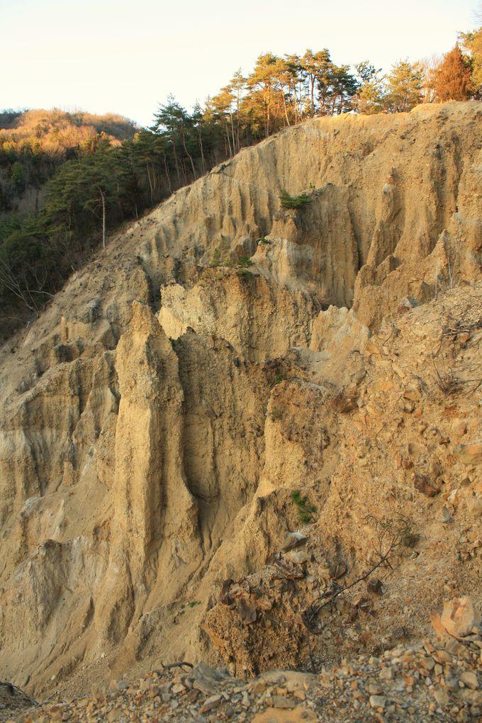 「阿波の土柱」自然が造り出したドキドキスポット