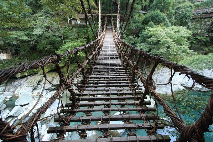 まさに吊橋効果に最適!?祖谷のかずら橋