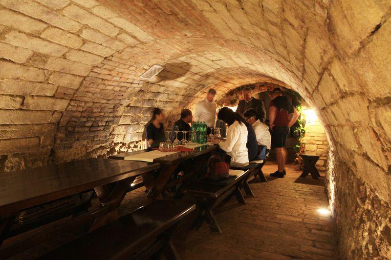 モラヴィアワインの名産地!チェコ国境の町ミクロフのオススメスポット