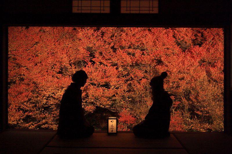 兵庫県の紅葉スポット!絵になる秋の名所10選 定番から穴場まで