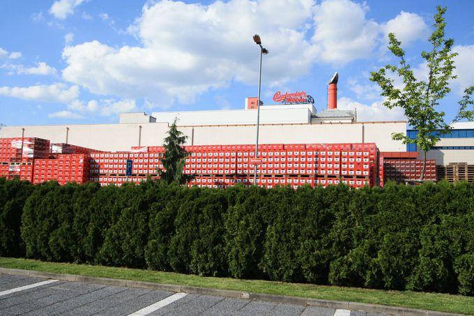 工場見学スタート