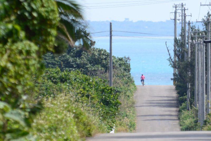 石垣島を拠点に満喫!初めての離島観光2泊3日モデルコース