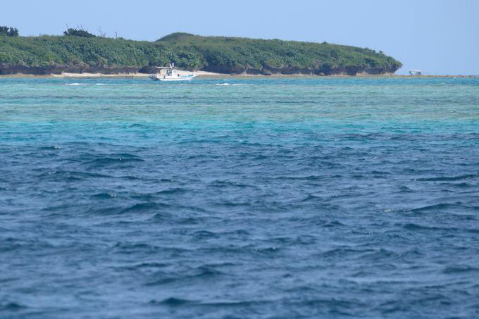 2日目午後:小浜島から竹富島へ