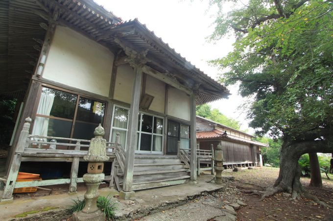 日本名水百選の一つ、清水寺に湧き出る美味しい水
