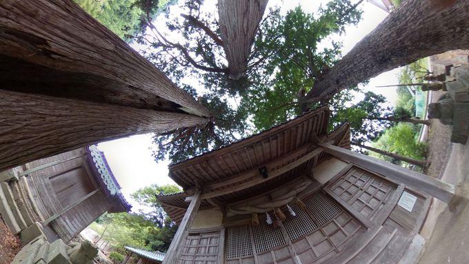 北野神社は島の穴場スポット