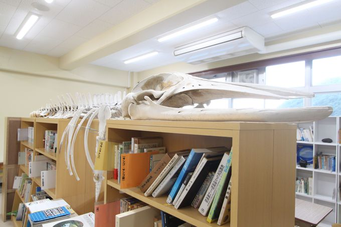 廊下も教室も、校内の至る所が展示空間に