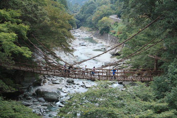 川魚を食べて勇気を出し、スリル満点の吊り橋へGO!