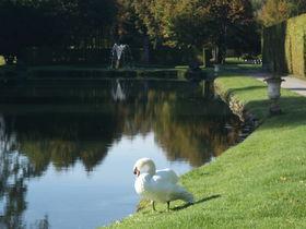 ベルギーワロン地方「アンヌヴォワ庭園」は自然溢れる憩いの場
