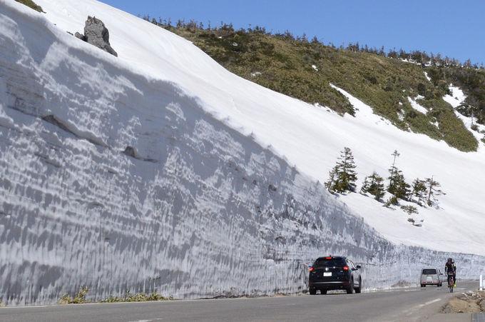 雪壁を見ながらのドライブを