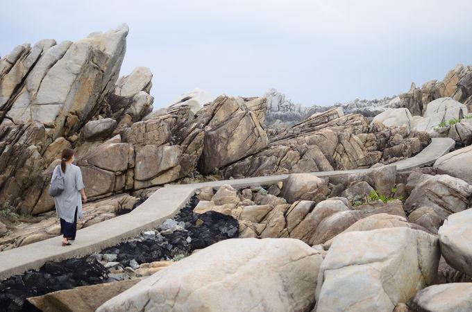 「ムシロ瀬」に広がる花崗岩にも注目