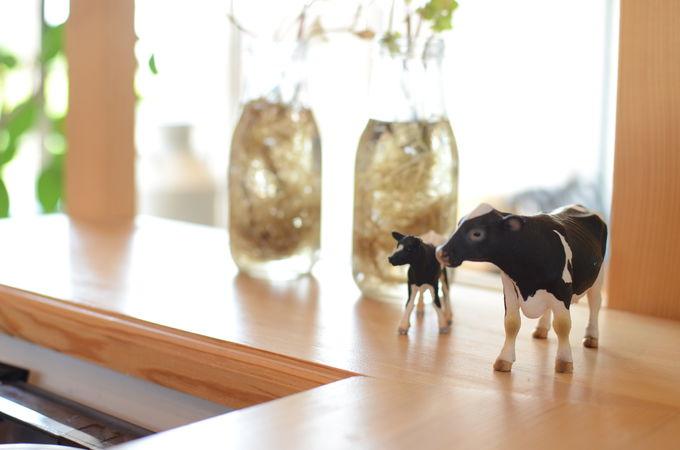 道東旅の拠点に!中標津「ushiyado」は牛がテーマのゲストハウス