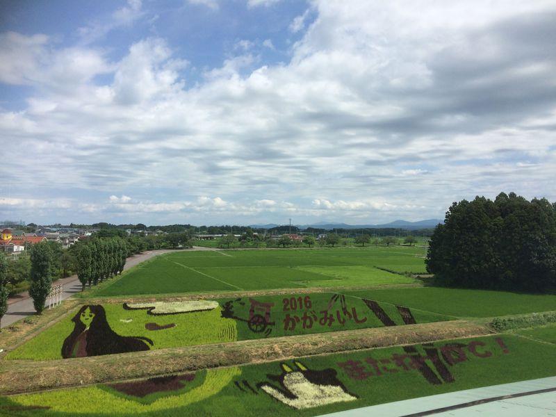福島県鏡石町 復興のシンボル「田んぼアート」を見に行こう