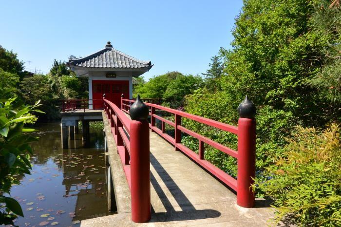 鴨が飛来する池がある寺 高源院