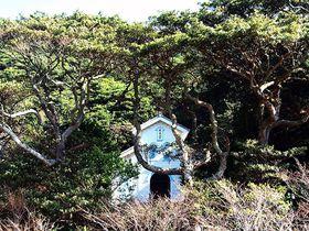 入江にひっそり佇む長崎県・奈留島の木造教会「江上天主堂」の愛らしい姿は必見!