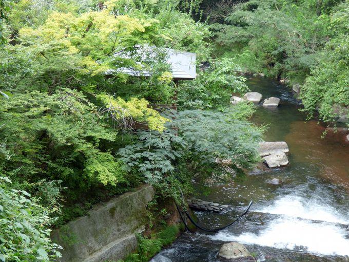 黒川温泉の中でロケーションは抜群、景色が楽しい旅館