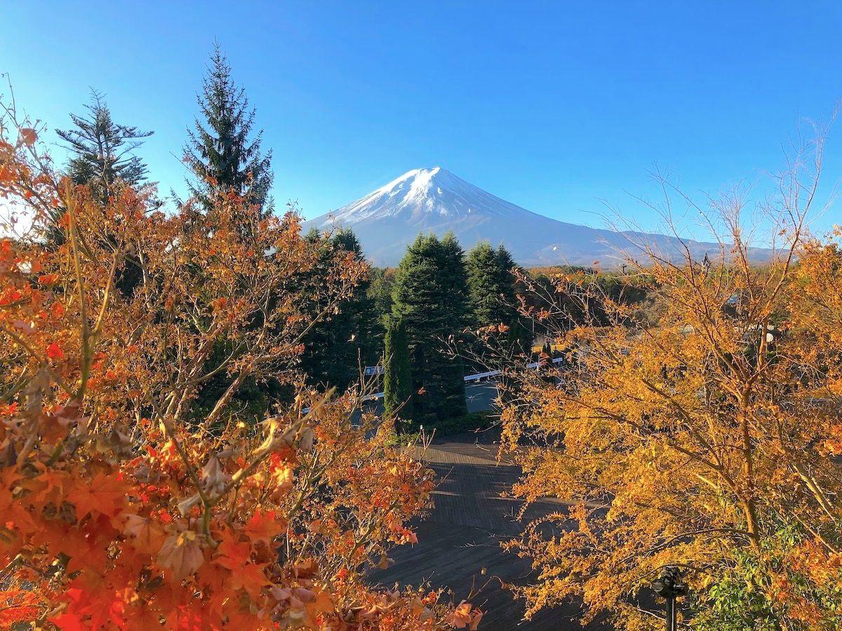 富士山の雄大な景色を堪能したいなら、富士山ビューを選びましょう!