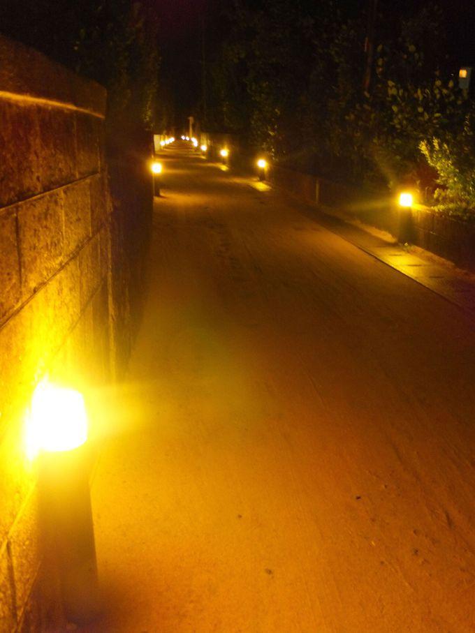 幻想的な「光の道」は島に宿泊した人だけが見られる光景