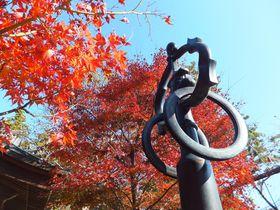これぞ日本の秋!「高尾山」お手軽登山で美しい紅葉&富士山を満喫