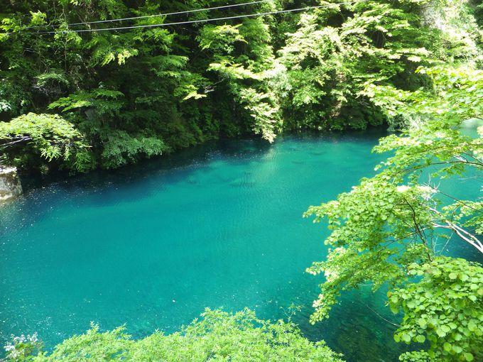ユーシンブルー×新緑=エメラルド色に輝く絶景!