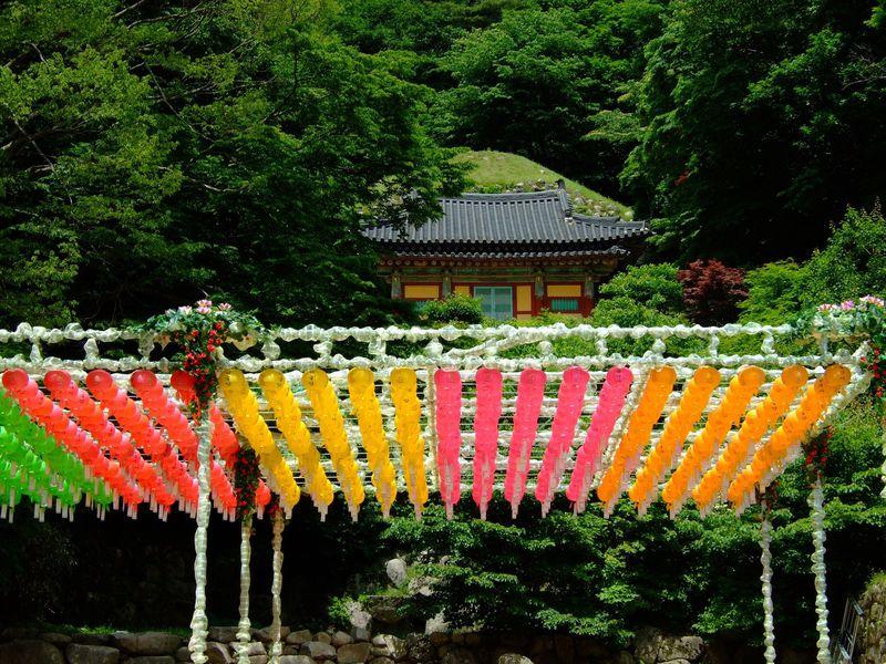 韓国旅行に行くならこの時期!ベストシーズンをご紹介