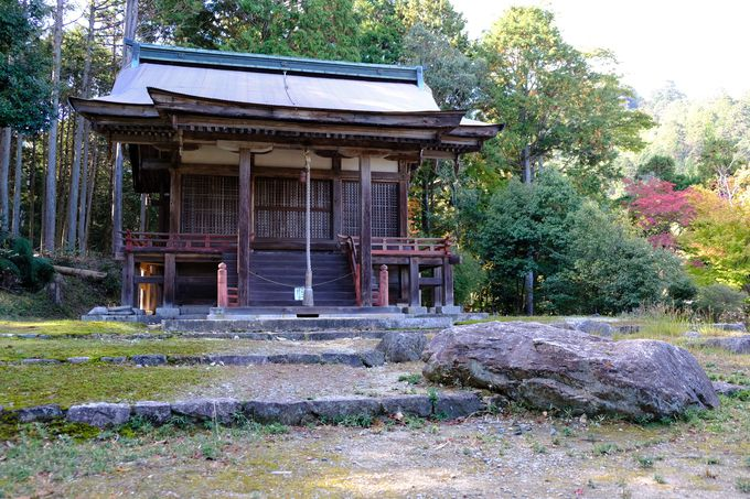鈴さんがお百度参りをした早尾神社