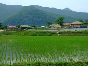 韓国は地方こそ面白い!足を延ばしたいオススメ地方都市5選
