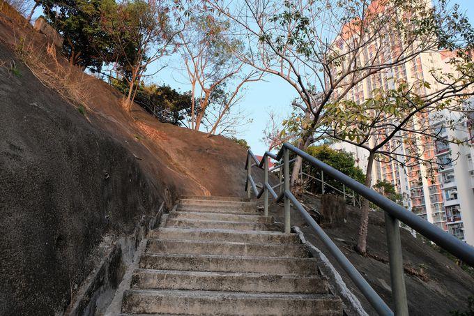 ユースホステル脇から階段を登る