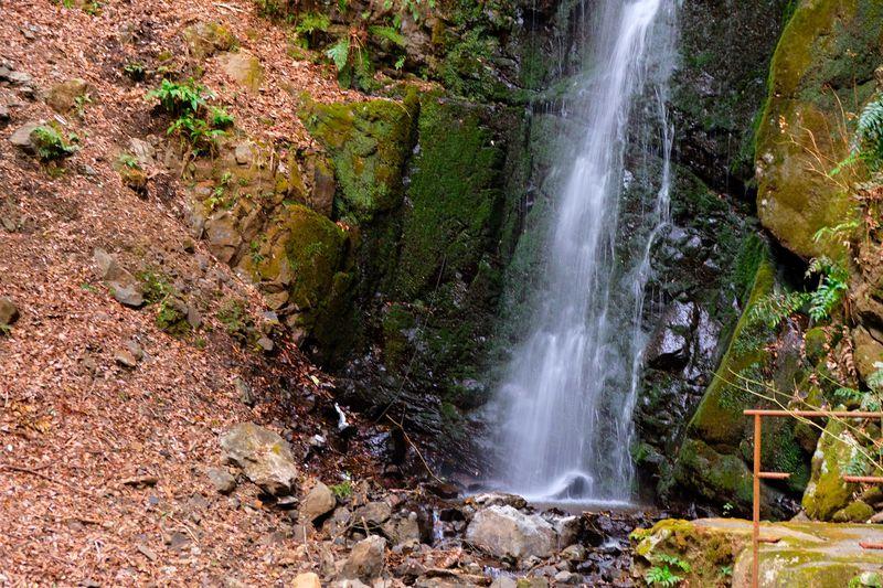 実は滝の町って知ってた!?湯河原温泉で滝めぐりを楽しもう