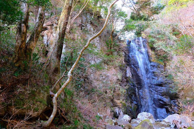 山中に隠れた神秘!「白雲の滝」&「去来の滝」