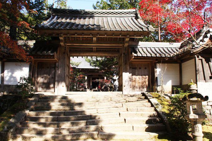 西明寺の入口では真上を見上げよう