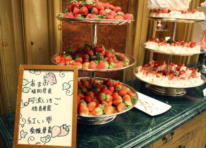 高級イチゴを食べ比べ!