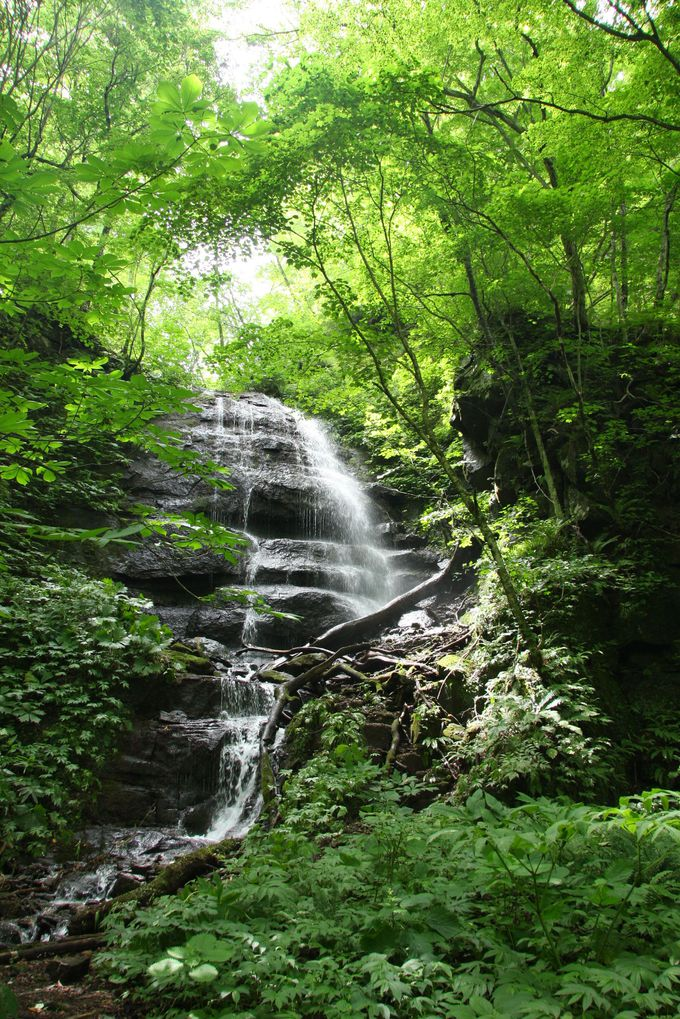 4.九段の滝