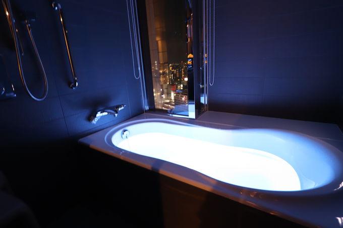 バスルームからもトレインビュー!珍しい光浴つき