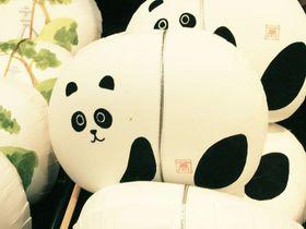 ウマかわいい!女子が喜ぶJR金沢駅で買えるお土産ベスト5
