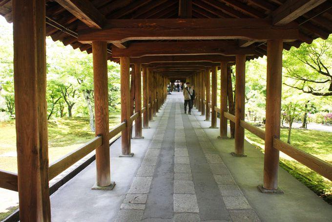 東福寺三名橋からの眺望比べ