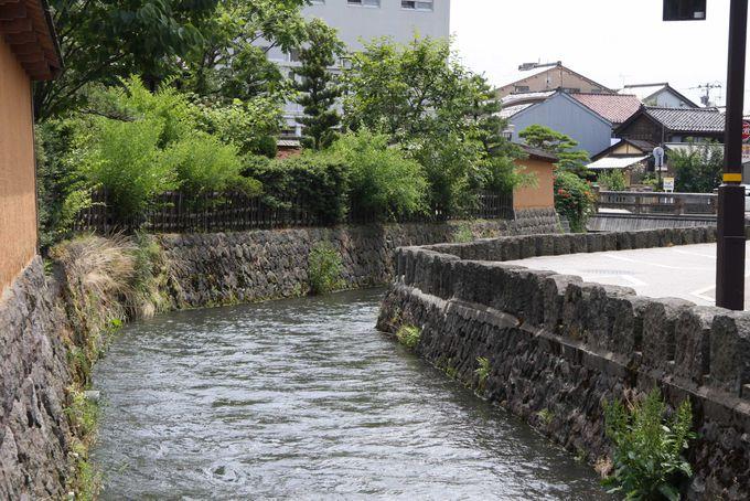 きれいな水がいたるところに流れる金沢