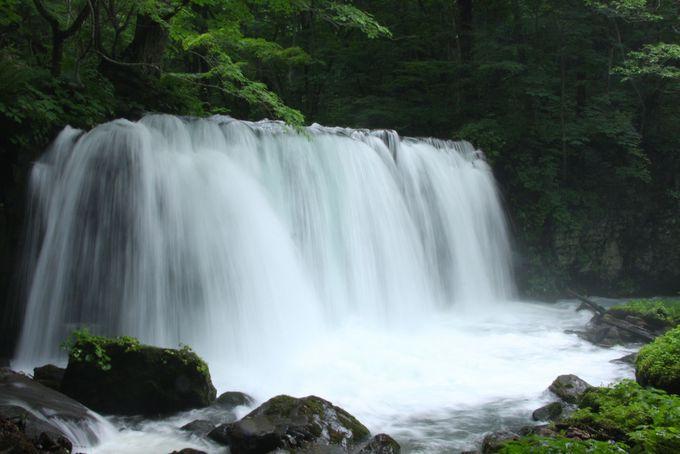奥入瀬渓流屈指の滝「銚子大滝」