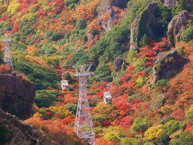 小豆島の紅葉名所「寒霞渓」はロープウェイアクセスで混雑知らず!