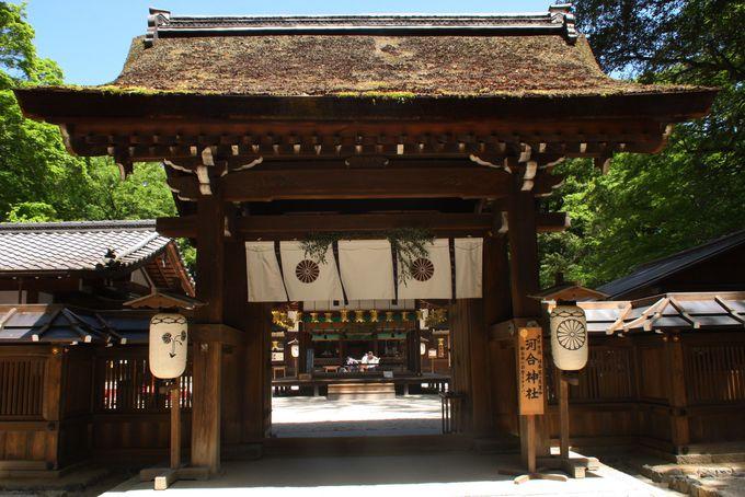 【1日目/AM10:00〜】観光スタート!世界遺産「下鴨神社」へGO