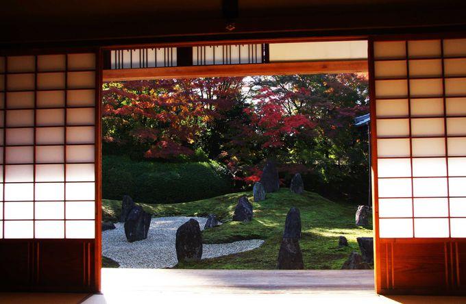 東福寺の穴場スポットで美しい庭と紅葉を堪能「光明院」